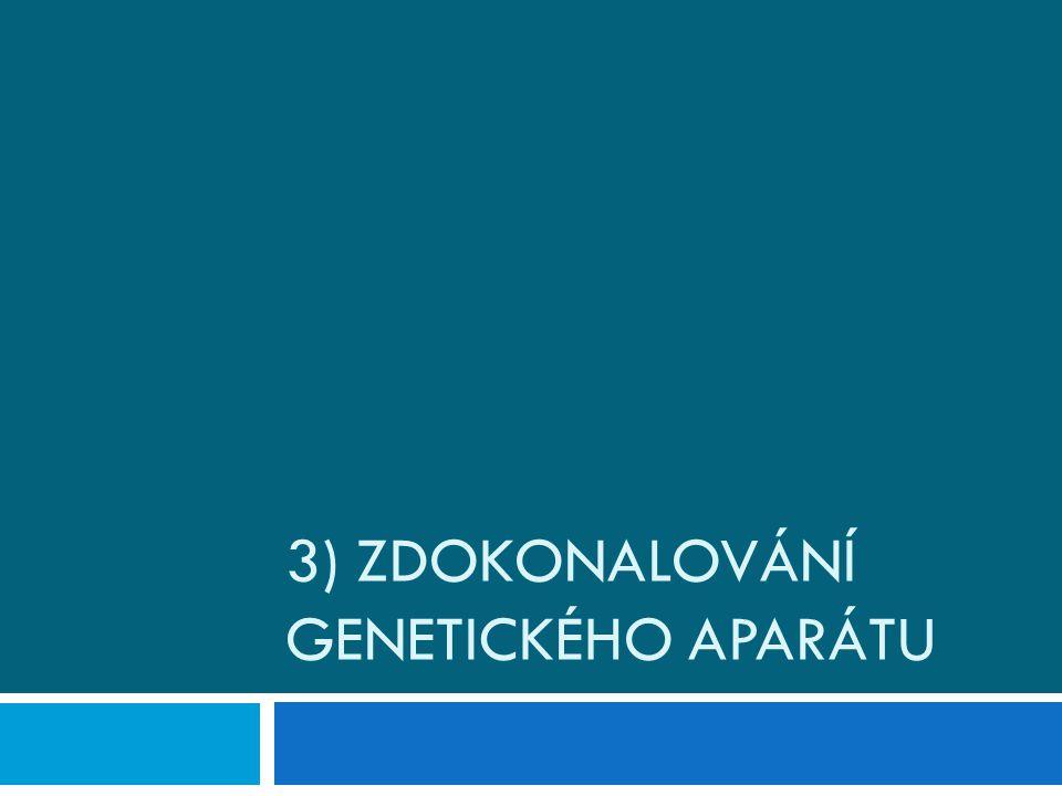 3) Zdokonalování genetického aparátu