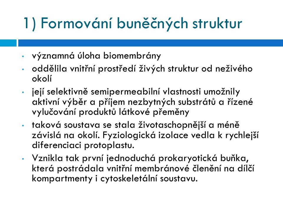 1) Formování buněčných struktur