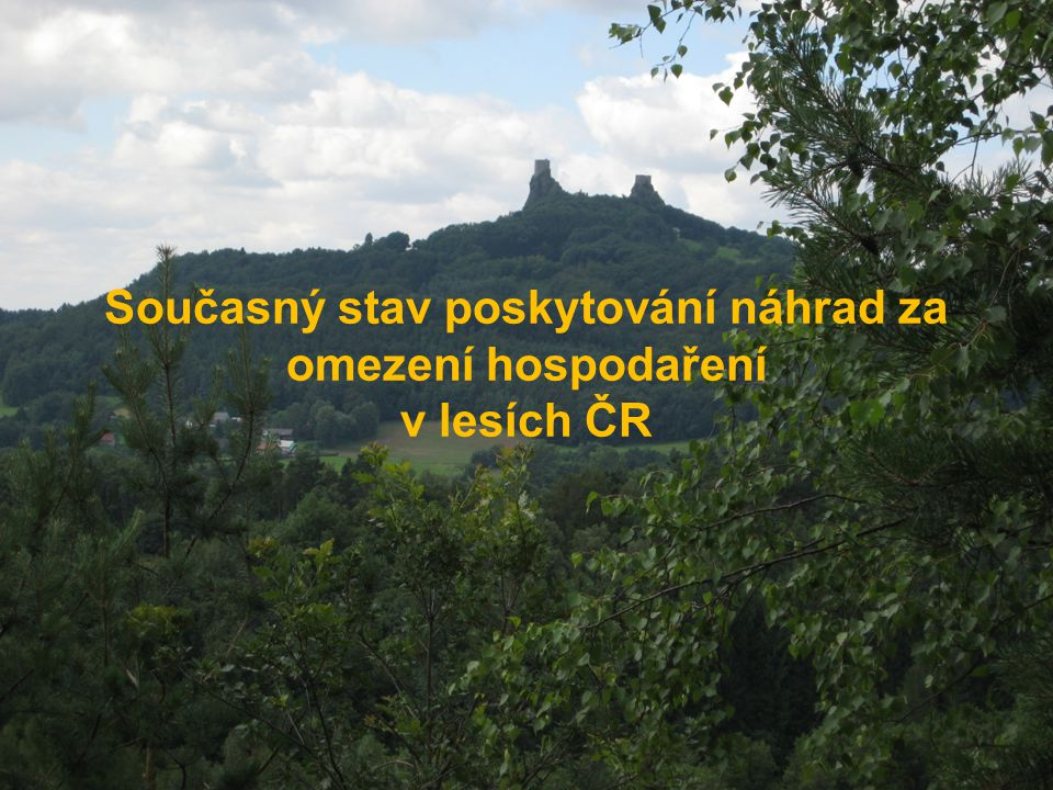 Současný stav poskytování náhrad za omezení hospodaření v lesích ČR