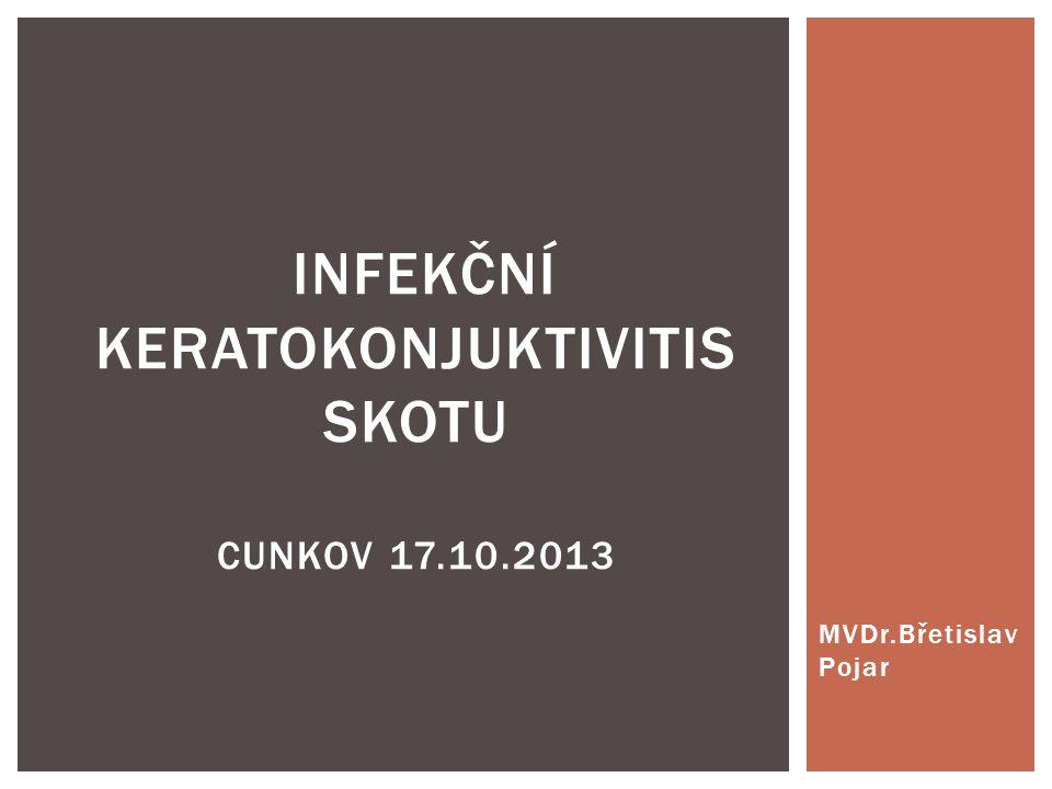 INFEKČNÍ KERATOKONJUKTIVITIS SKOTU Cunkov 17.10.2013