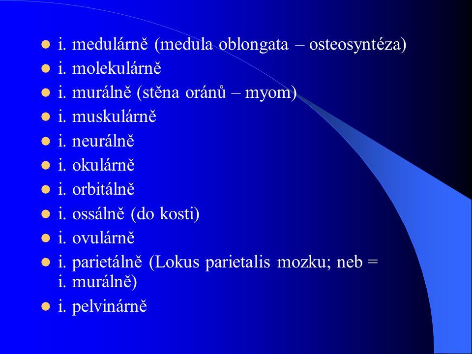 i. medulárně (medula oblongata – osteosyntéza)