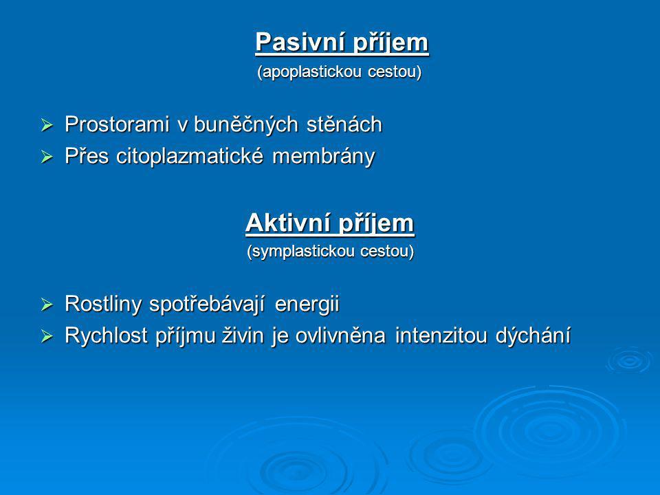Pasivní příjem Aktivní příjem Prostorami v buněčných stěnách