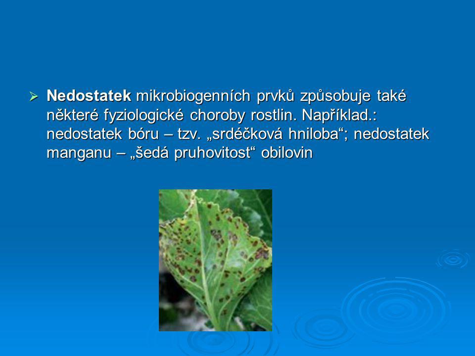 Nedostatek mikrobiogenních prvků způsobuje také některé fyziologické choroby rostlin.