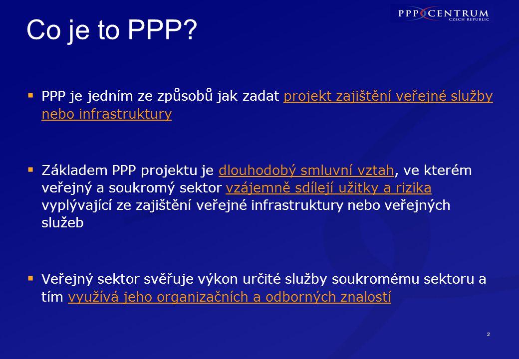 Formy PPP Neexistuje žádná jednotná definice