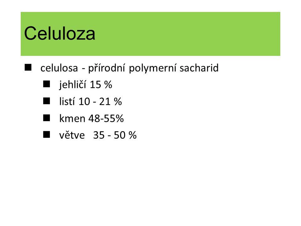 Celuloza n celulosa - přírodní polymerní sacharid n jehličí 15 %