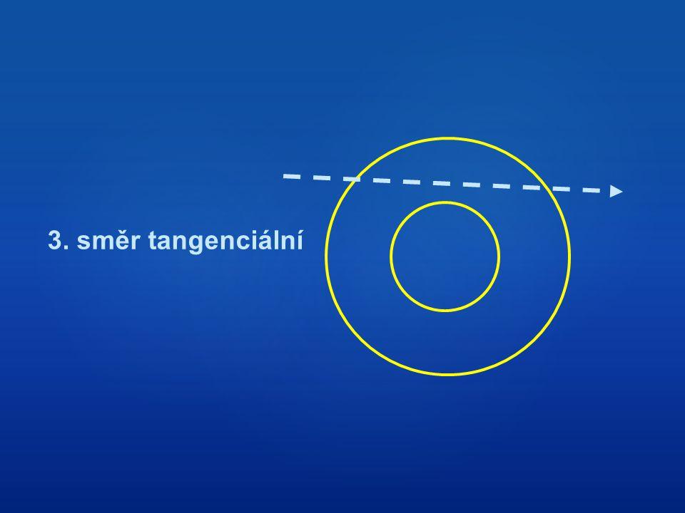 3. směr tangenciální