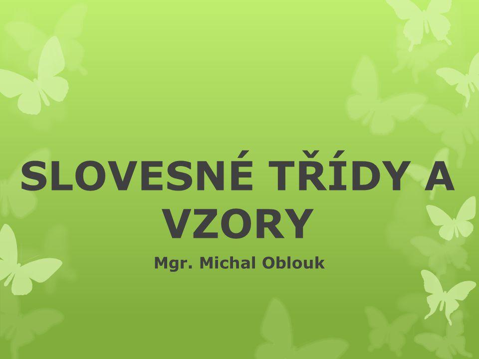 SLOVESNÉ TŘÍDY A VZORY Mgr. Michal Oblouk