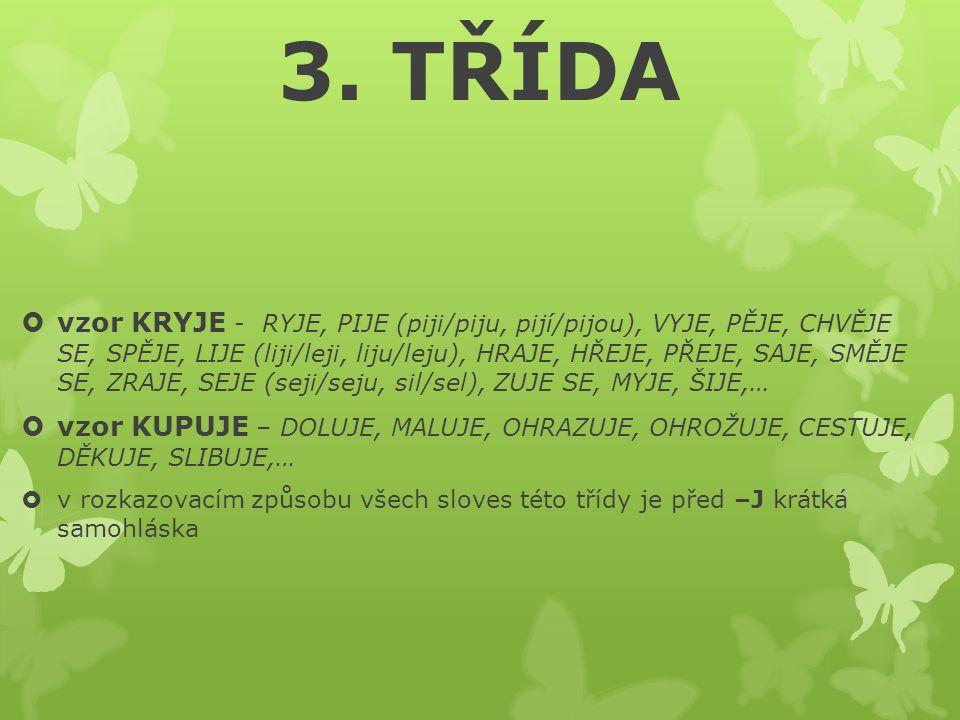3. TŘÍDA