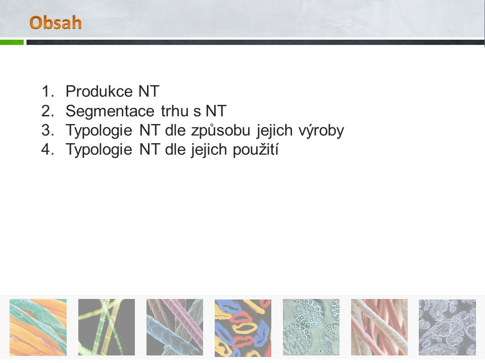 Obsah Produkce NT Segmentace trhu s NT