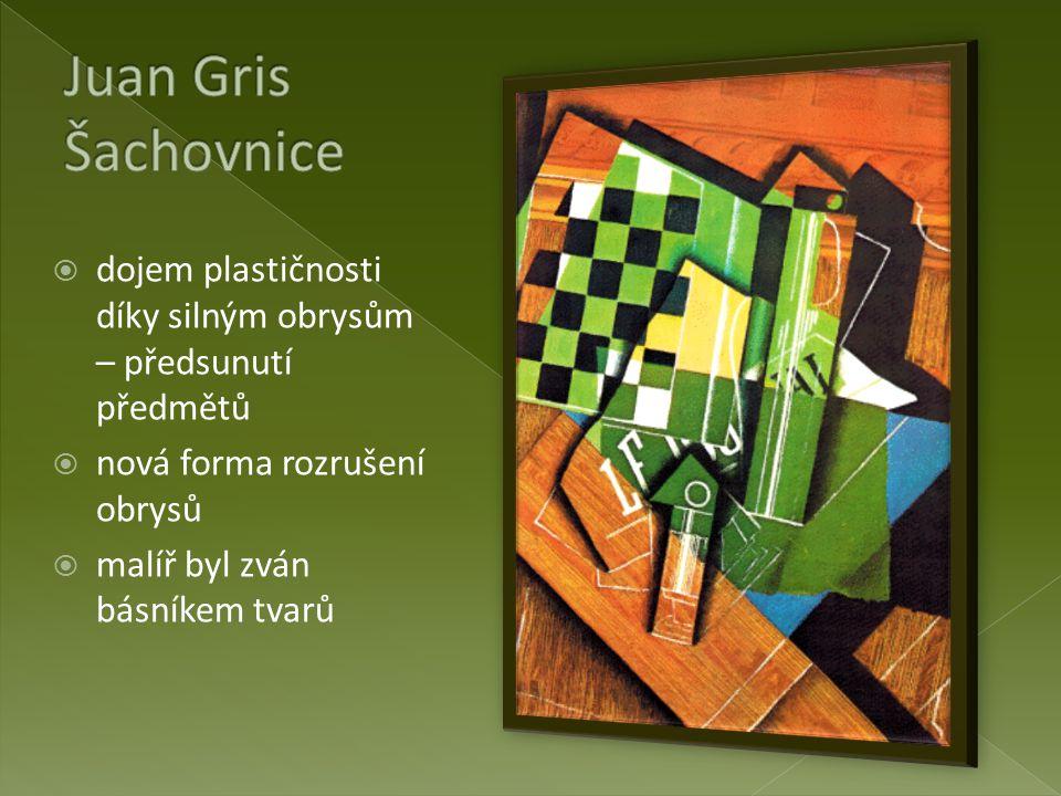 Juan Gris Šachovnice dojem plastičnosti díky silným obrysům – předsunutí předmětů. nová forma rozrušení obrysů.