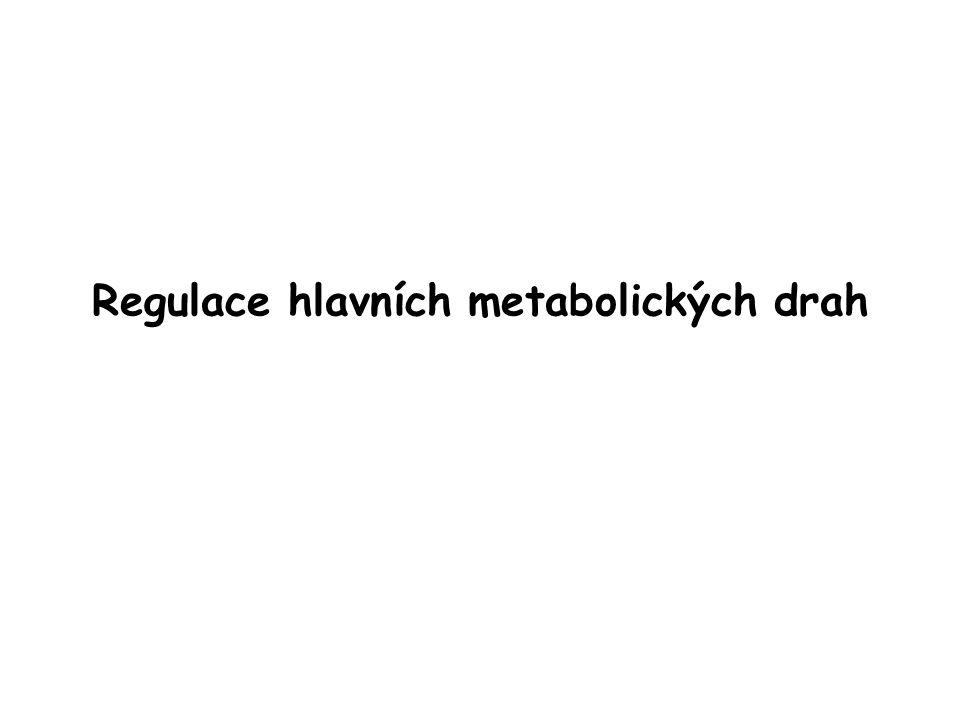 Regulace hlavních metabolických drah