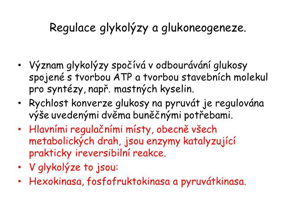 Regulace glykolýzy a glukoneogeneze.