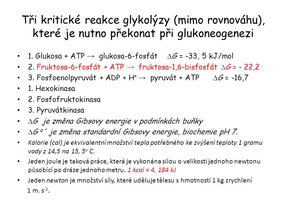 Tři kritické reakce glykolýzy (mimo rovnováhu), které je nutno překonat při glukoneogenezi