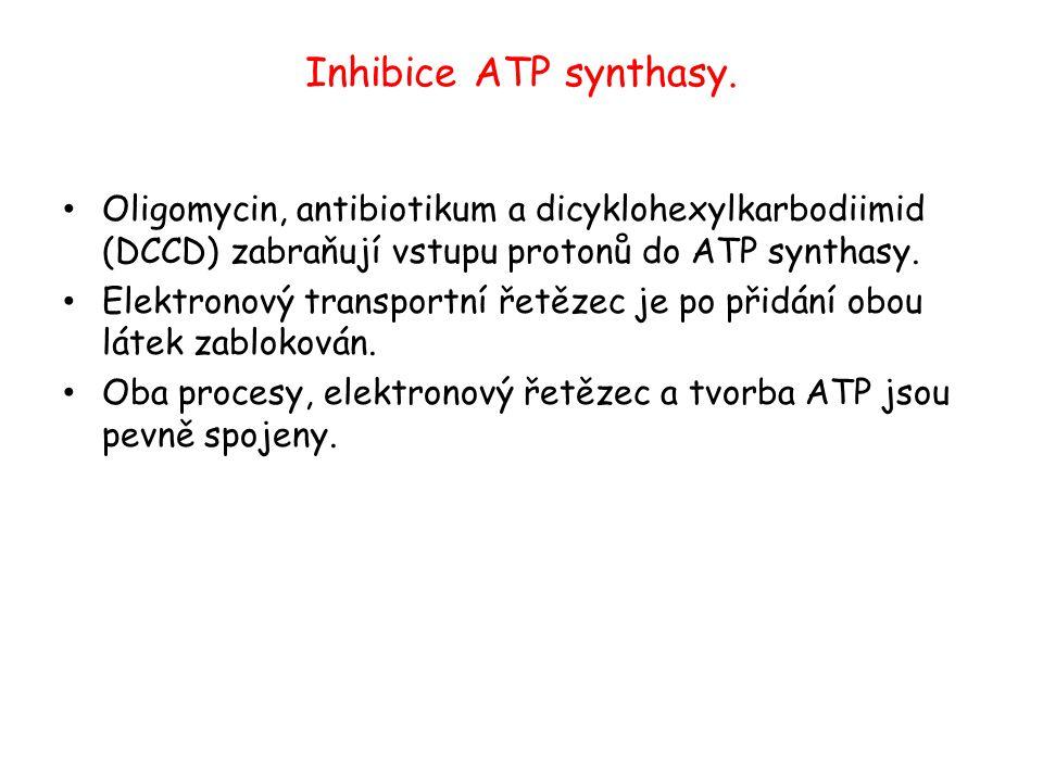 Inhibice ATP synthasy. Oligomycin, antibiotikum a dicyklohexylkarbodiimid (DCCD) zabraňují vstupu protonů do ATP synthasy.