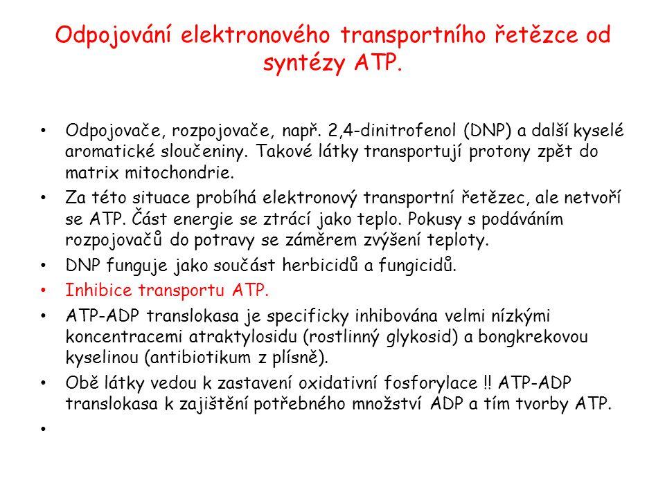 Odpojování elektronového transportního řetězce od syntézy ATP.