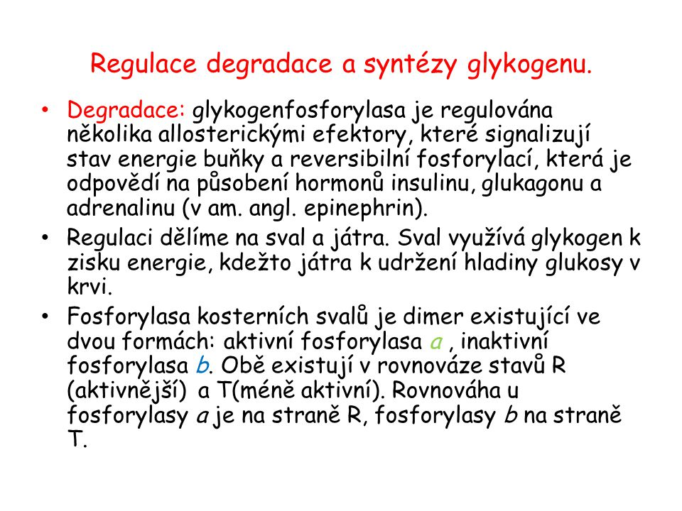 Regulace degradace a syntézy glykogenu.