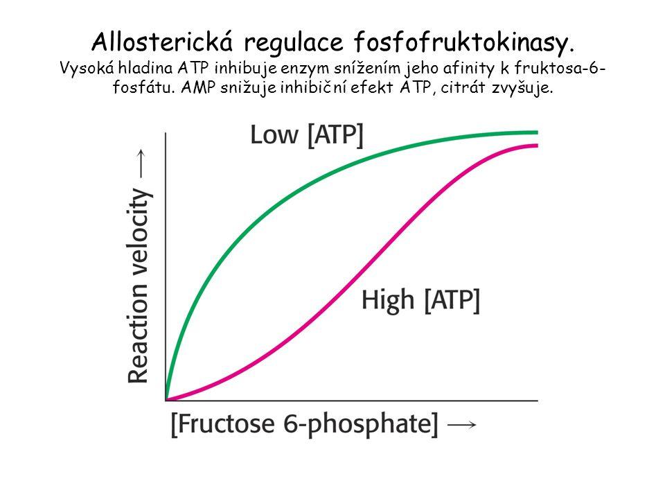 Allosterická regulace fosfofruktokinasy