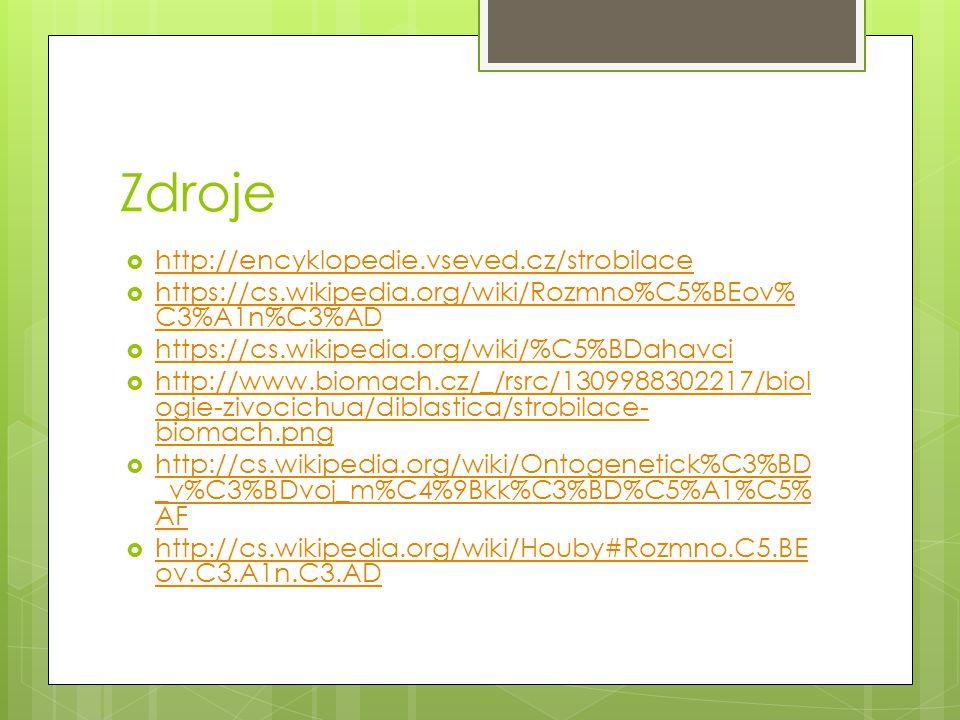 Zdroje http://encyklopedie.vseved.cz/strobilace