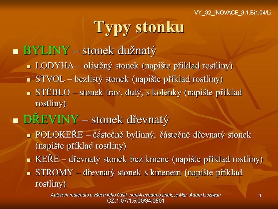Typy stonku BYLINY – stonek dužnatý DŘEVINY – stonek dřevnatý