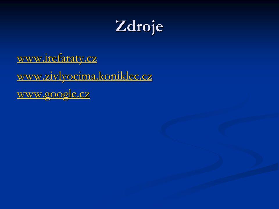 Zdroje www.irefaraty.cz www.zivlyocima.koniklec.cz www.google.cz