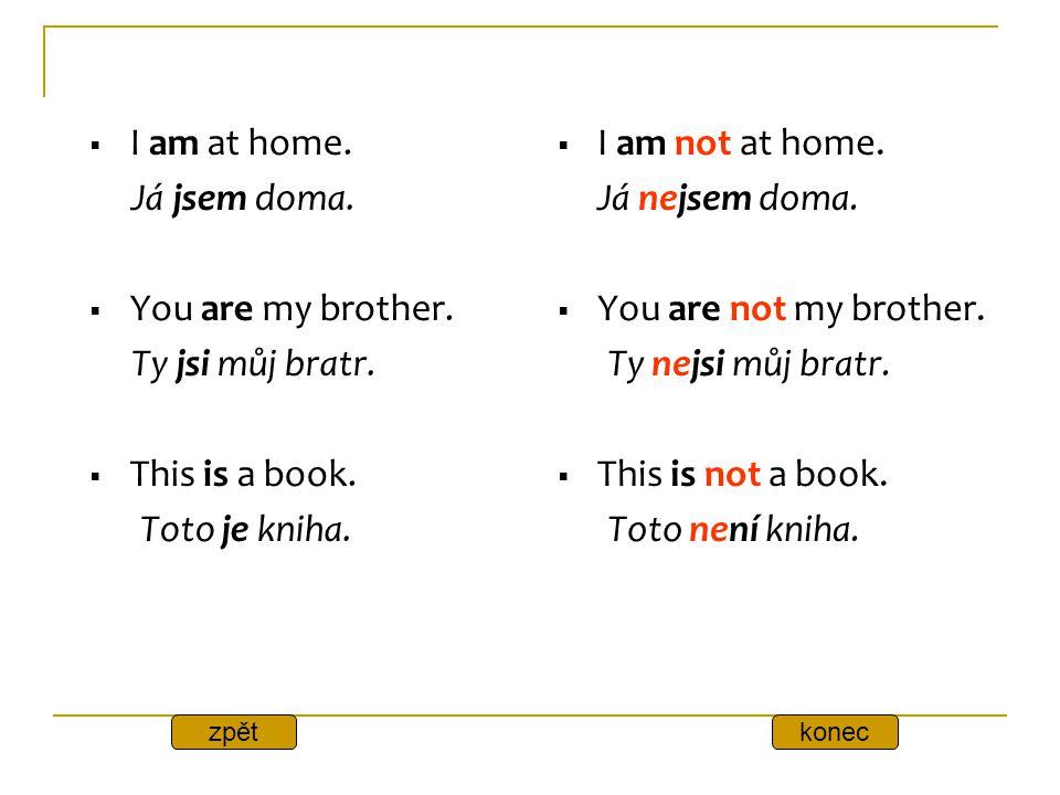 I am at home. Já jsem doma. You are my brother. Ty jsi můj bratr.