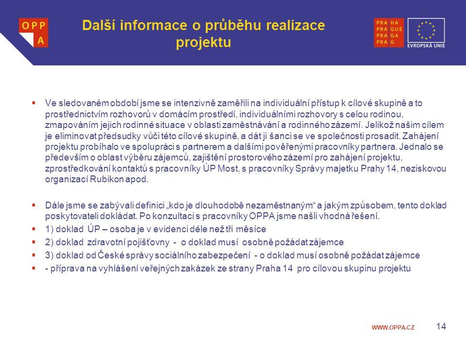 Další informace o průběhu realizace projektu