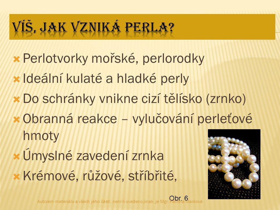 Perlotvorky mořské, perlorodky Ideální kulaté a hladké perly