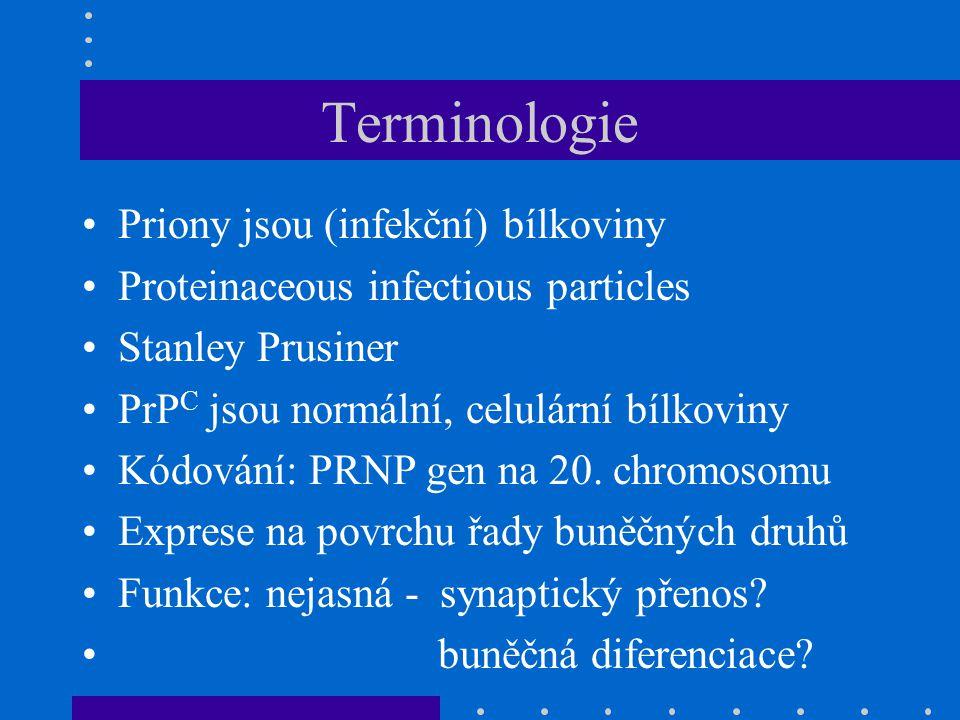 Terminologie Priony jsou (infekční) bílkoviny