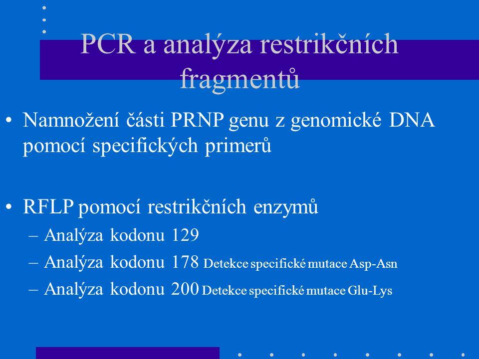PCR a analýza restrikčních fragmentů