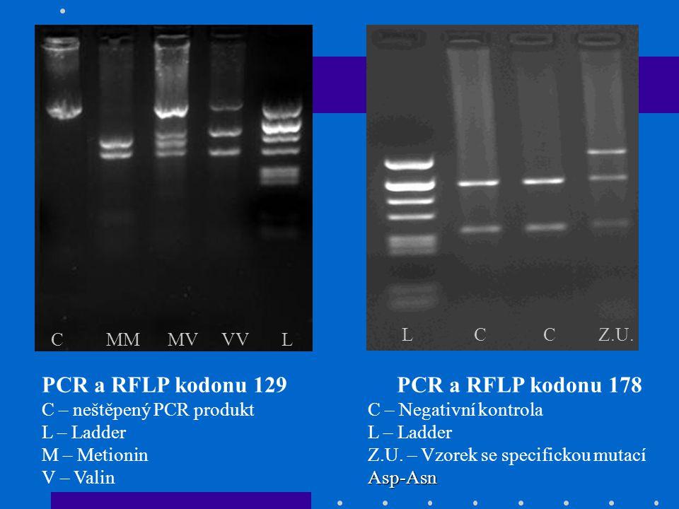 PCR a RFLP kodonu 129 PCR a RFLP kodonu 178 L C C Z.U. C MM MV VV L