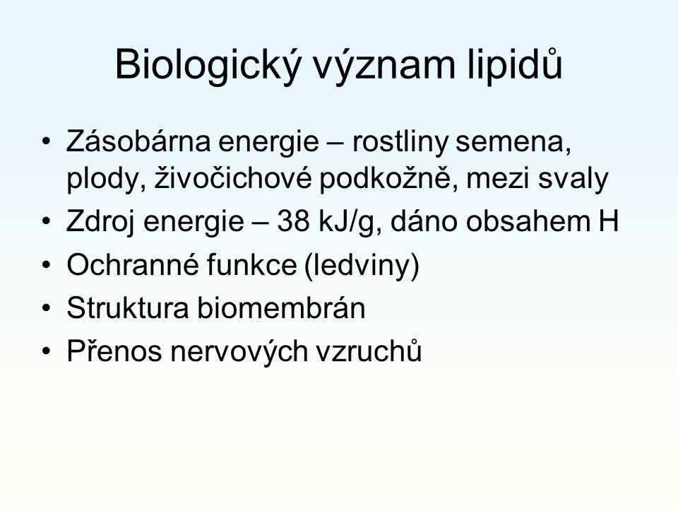 Biologický význam lipidů