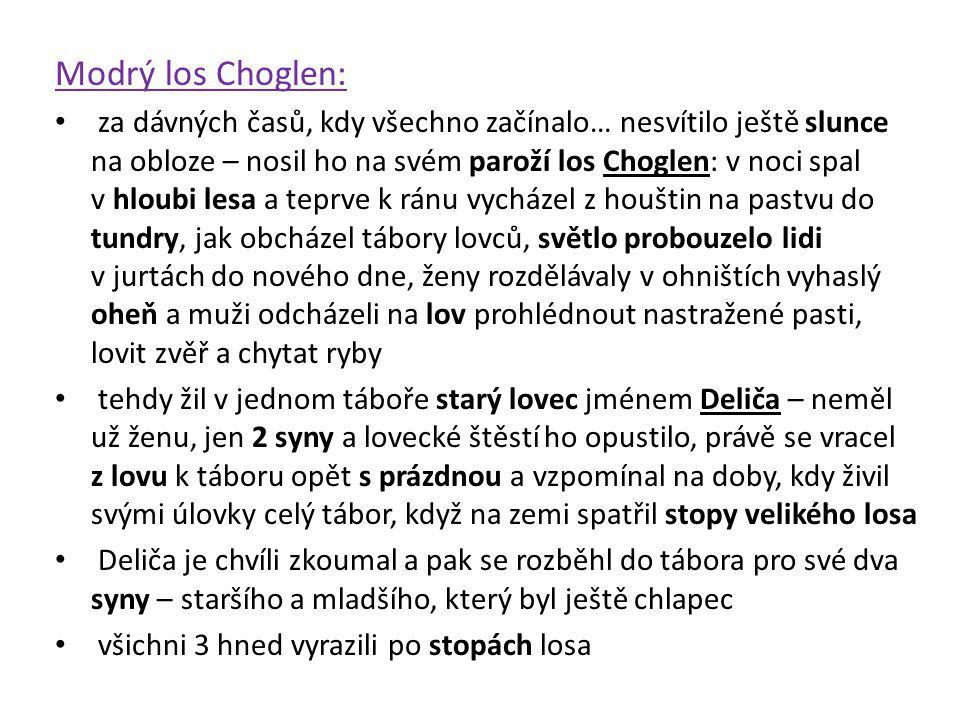 Modrý los Choglen: