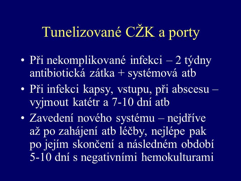 Tunelizované CŽK a porty