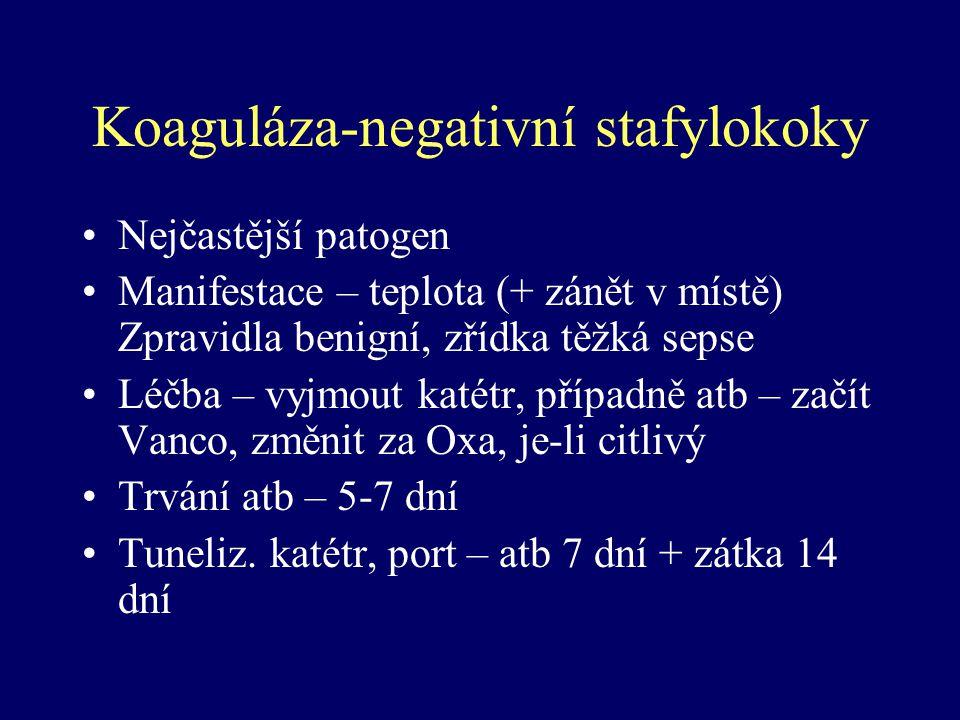 Koaguláza-negativní stafylokoky