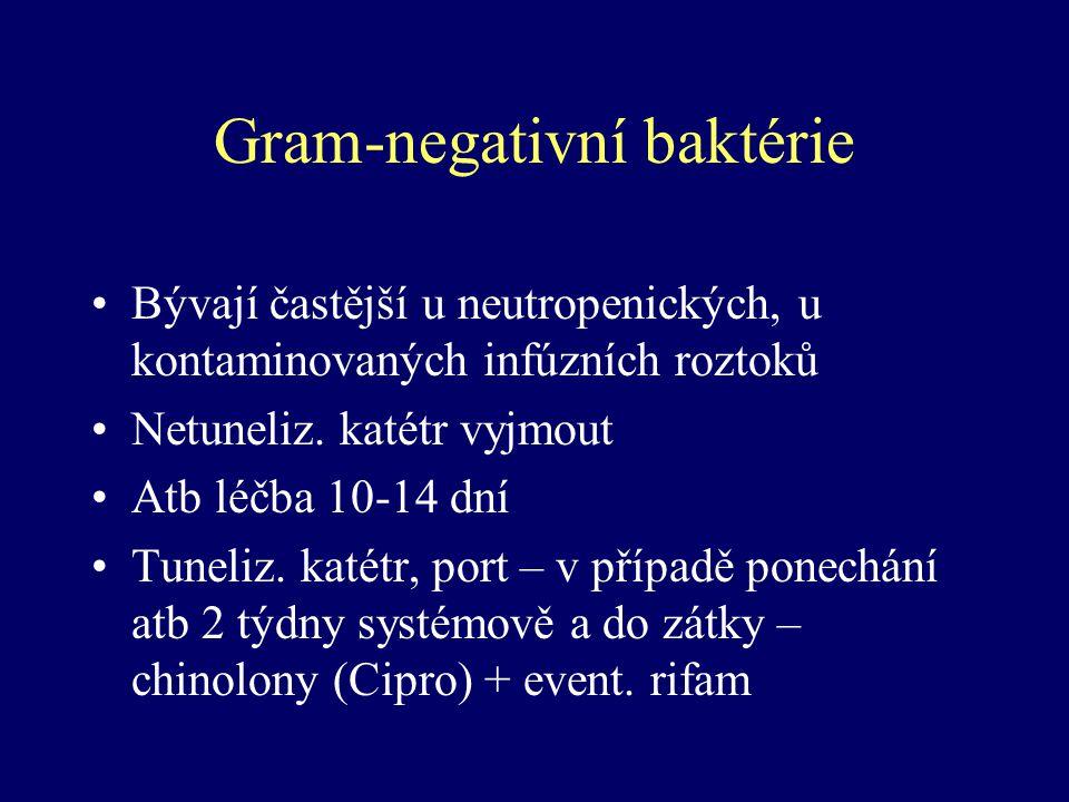 Gram-negativní baktérie
