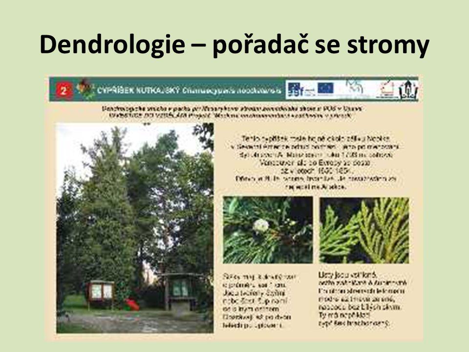 Dendrologie – pořadač se stromy