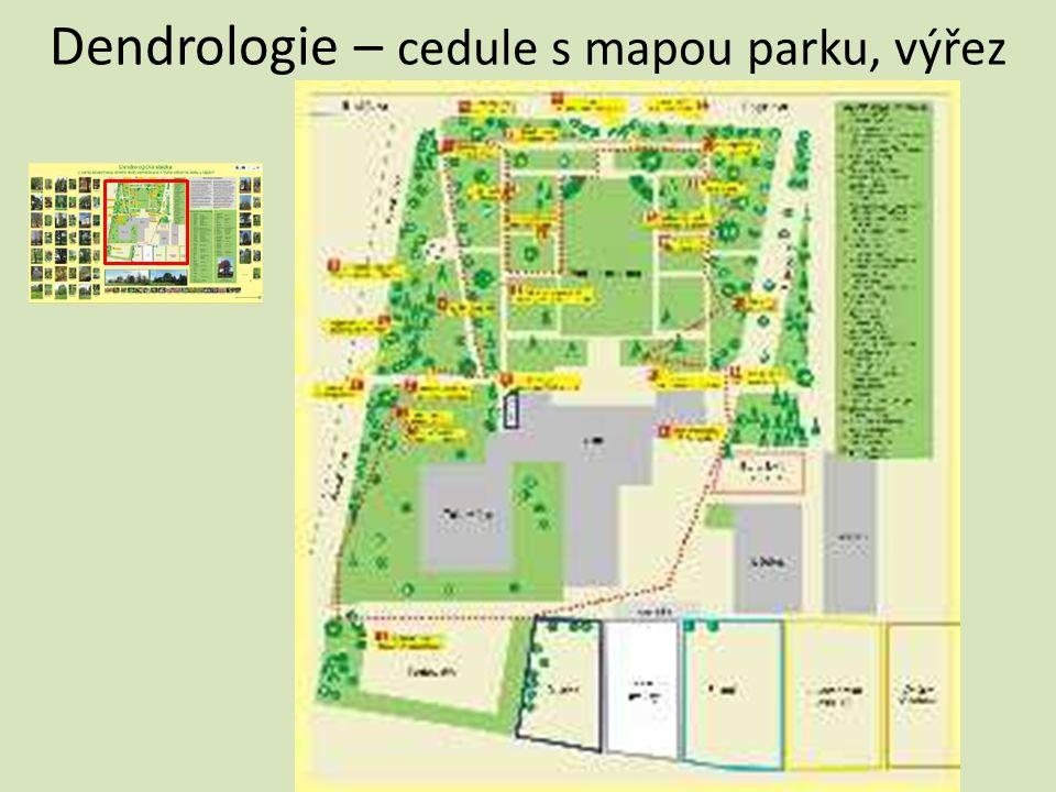 Dendrologie – cedule s mapou parku, výřez