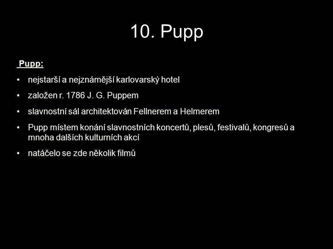 10. Pupp Pupp: nejstarší a nejznámější karlovarský hotel