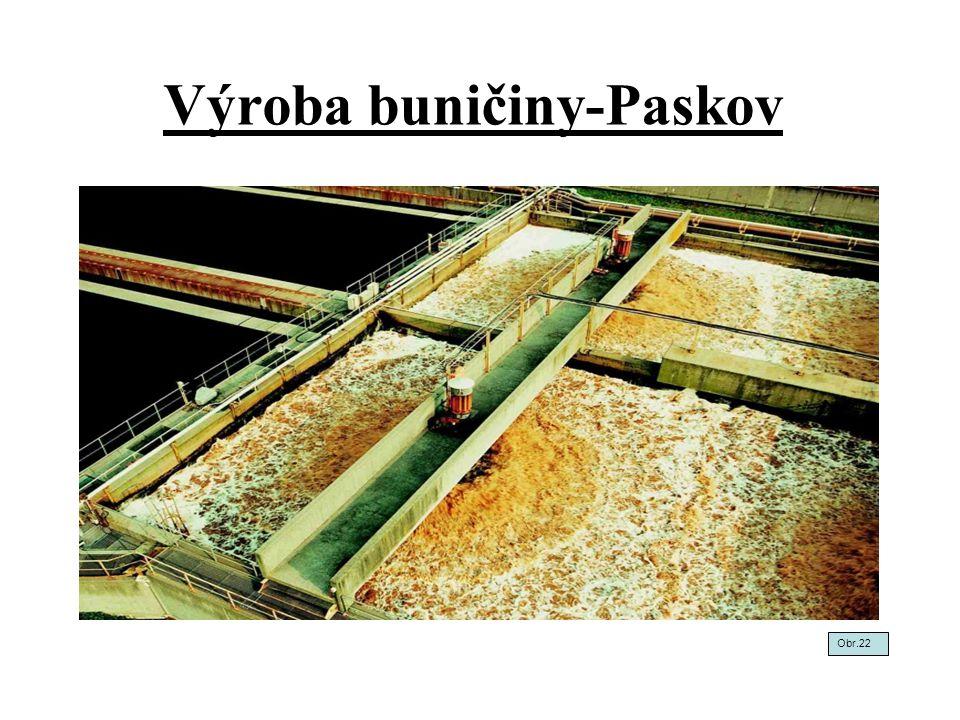 Výroba buničiny-Paskov
