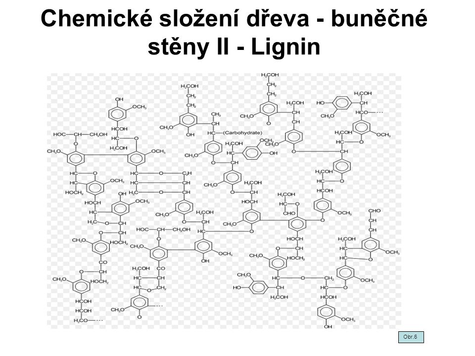 Chemické složení dřeva - buněčné stěny II - Lignin