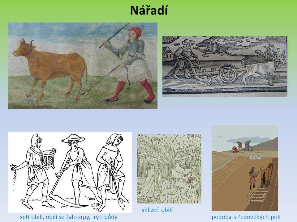 Nářadí sklizeň obilí setí obilí, obilí se žalo srpy, rytí půdy