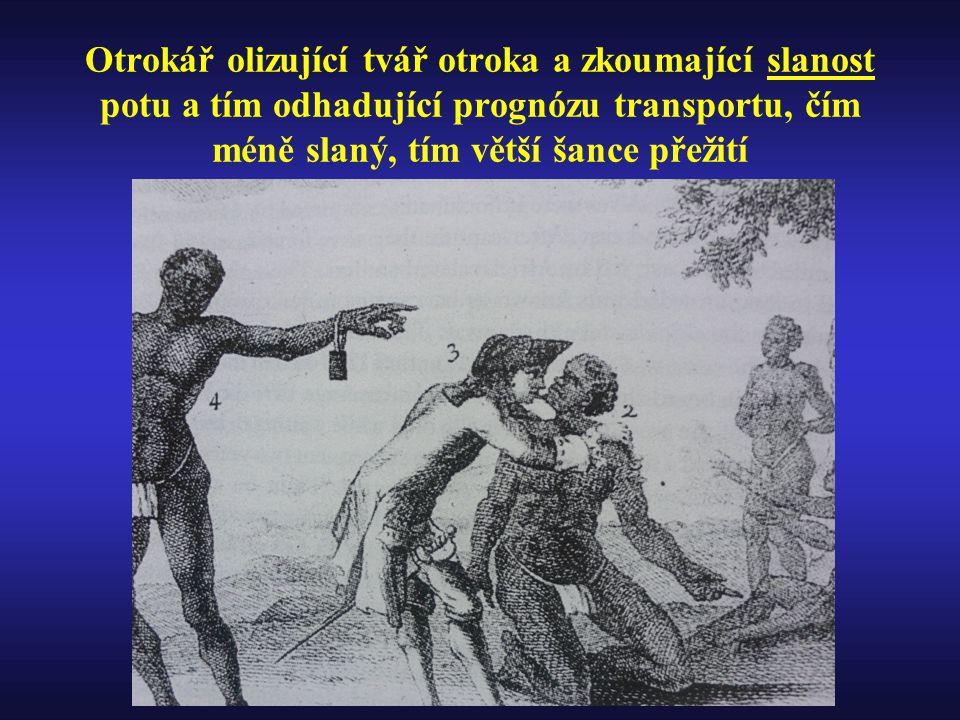 Otrokář olizující tvář otroka a zkoumající slanost potu a tím odhadující prognózu transportu, čím méně slaný, tím větší šance přežití