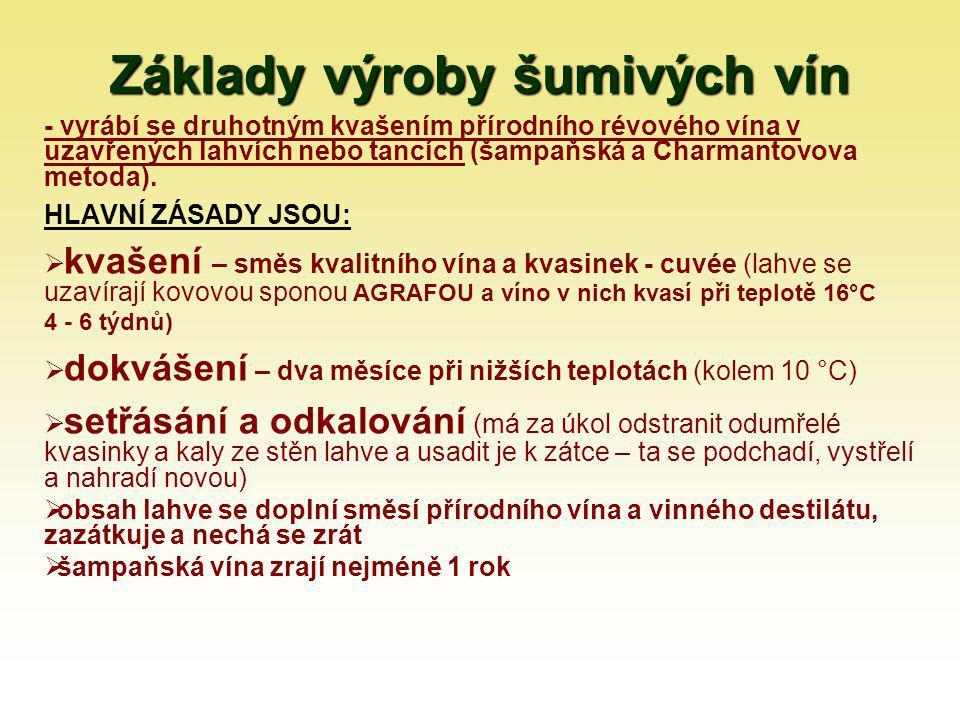 Základy výroby šumivých vín
