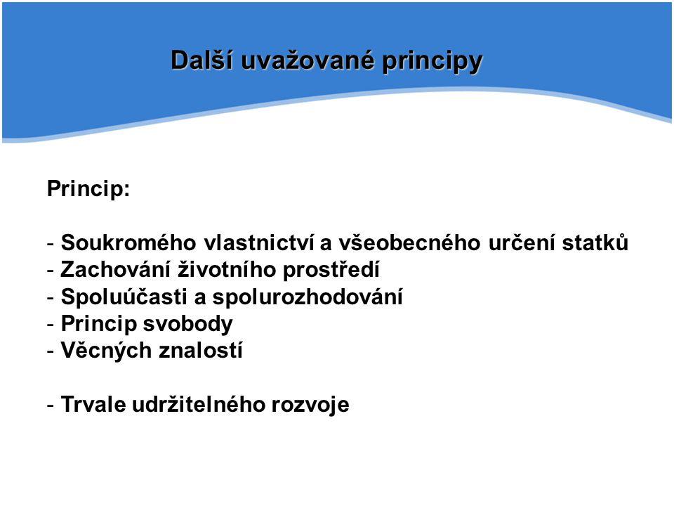 Další uvažované principy