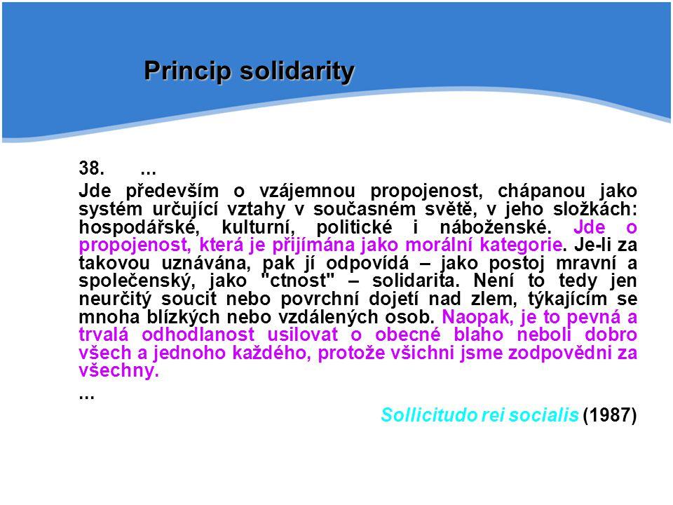 Princip solidarity 38. ...