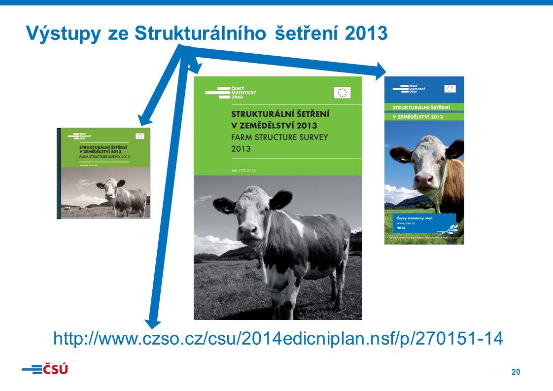 Výstupy ze Strukturálního šetření 2013