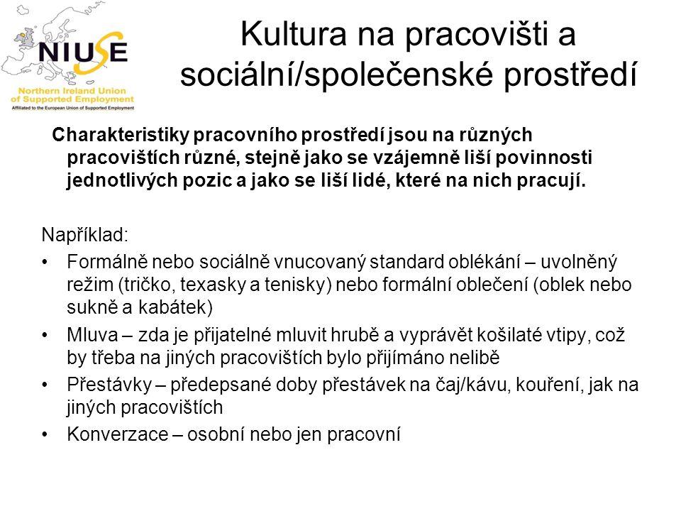 Kultura na pracovišti a sociální/společenské prostředí