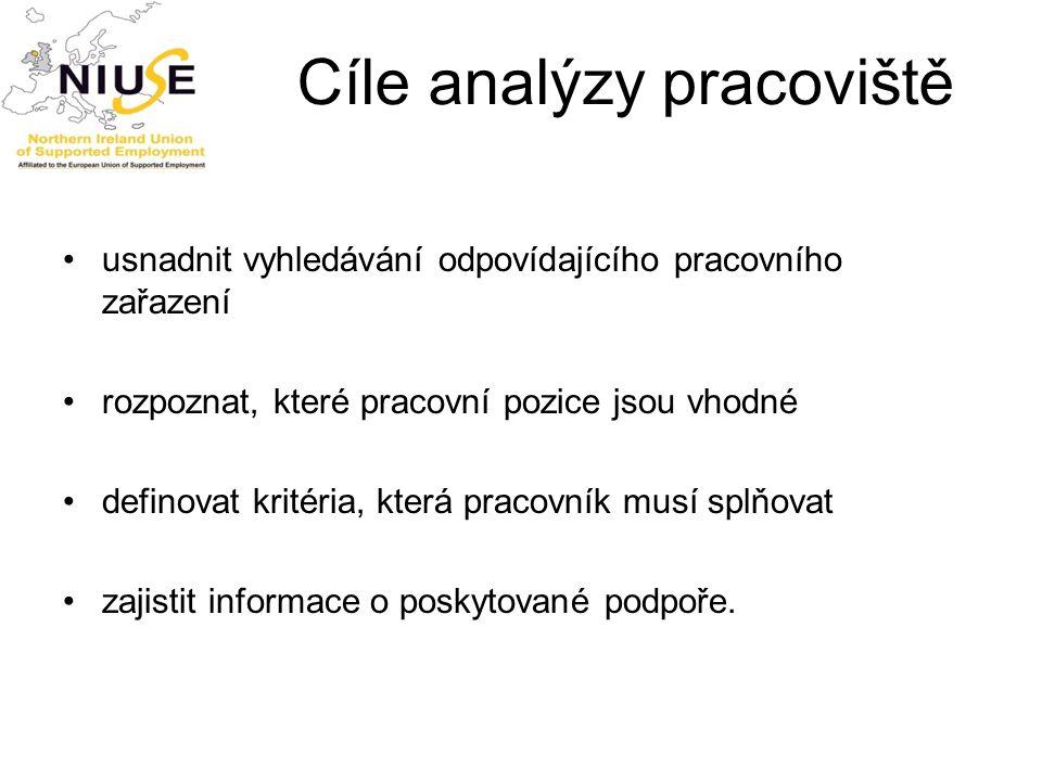 Cíle analýzy pracoviště