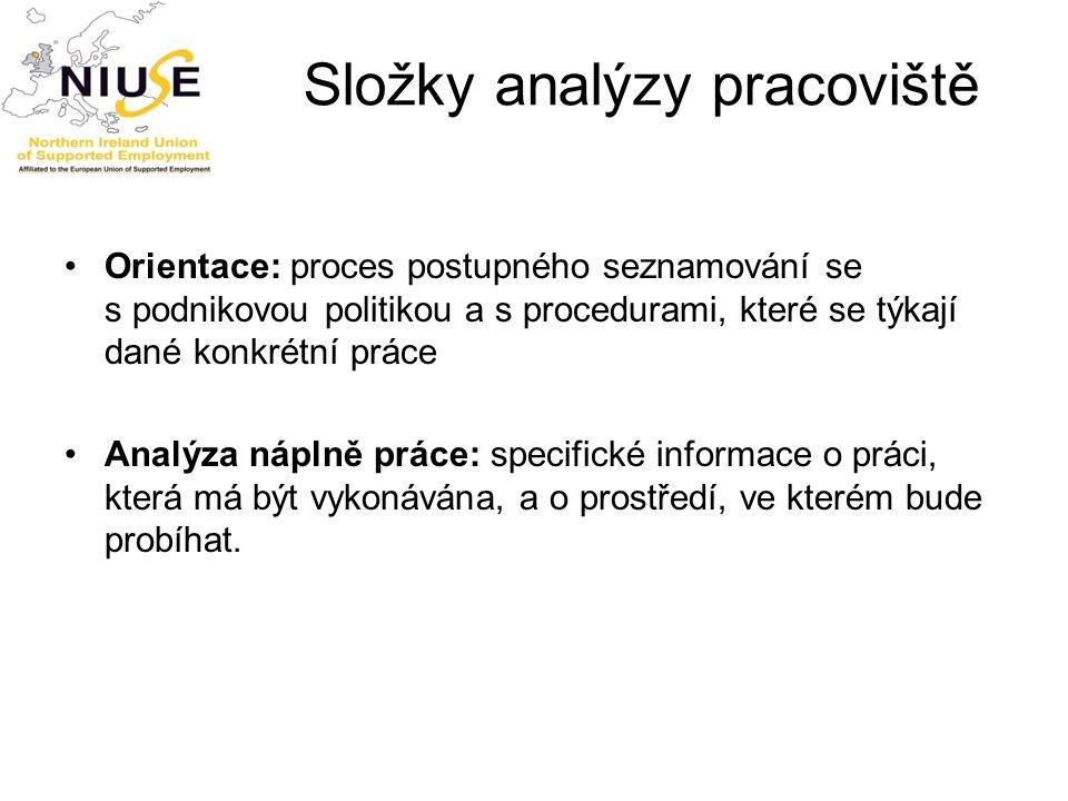 Složky analýzy pracoviště