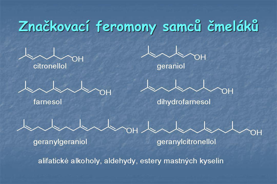 Značkovací feromony samců čmeláků